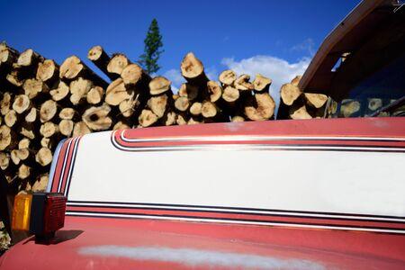 logging truck: Logging Truck Hood with Logs