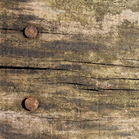 barnwood: Distressed Barnwood Grain Detail