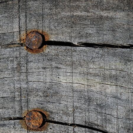 Rusty Nails in Old Faded Wood