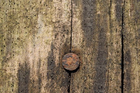 rusty nail: Weathered Barnwood with Rusty Nail Stock Photo