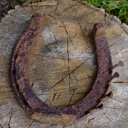 acer saccharum: Closeup of Rusty Horseshoe Sitting on Wood Splitting Block Stock Photo