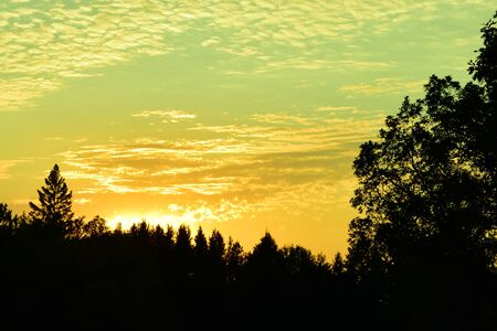 altocumulus: Sunset with Altocumulus Clouds and Forest Silhouettes