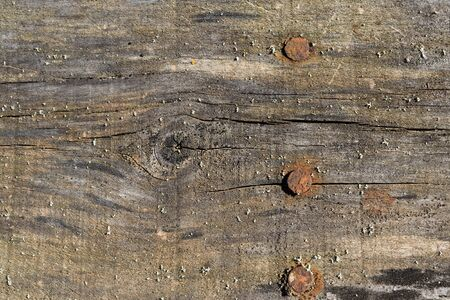 distressed wood: Three Nails in Old Distressed Wood Stock Photo