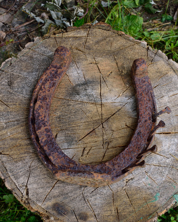 splitting: Rusty Horseshoe on Splitting Block