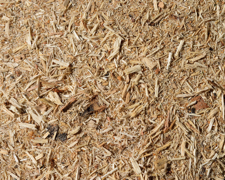 wood chip: Sawdust and Wood Chip Background