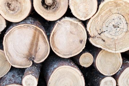 Close-up van Tamarack Log Ends Stockfoto
