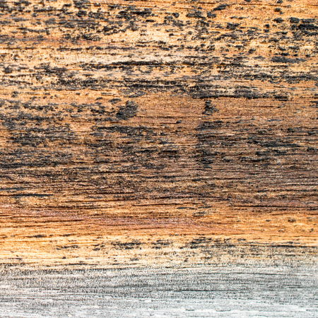 fixer upper: Closeup Detail of Weathered Barn Board