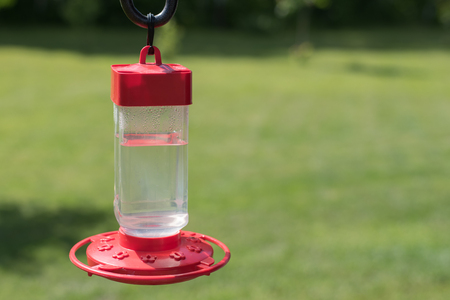 Hummingbird Feeder in Backyard Stock Photo - 84786075