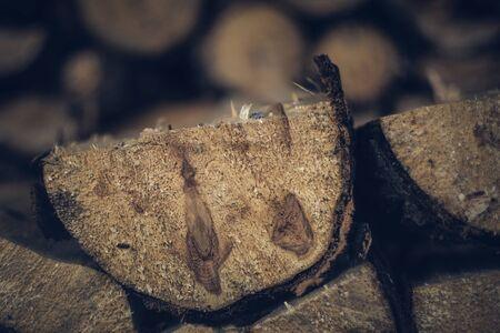 Piled Hardwood Fire Wood