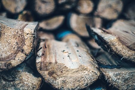 Split and Dried Fire Wood Stock Photo