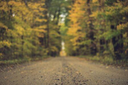 Gravel Road in Fall