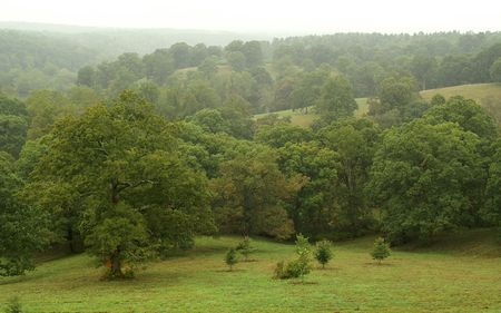 nc: Lush view from the Biltmore Estate Ashville NC on a rainy day Stock Photo