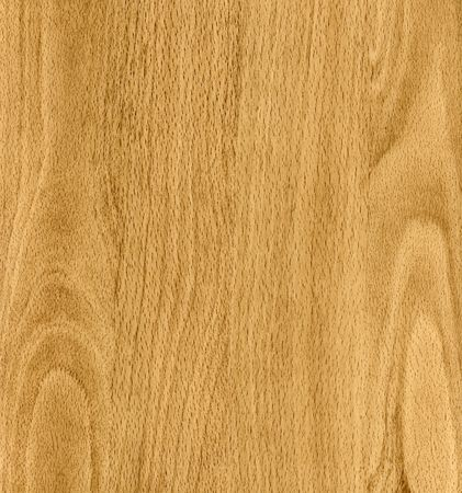 Original wood texture (high detailed this image) photo