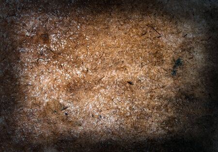 Grungy textured background from spotted plywood photo