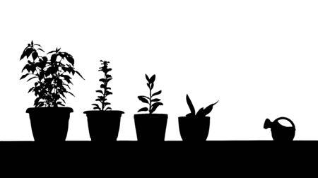 watering: omtrek van kamer planten en gieter  Stock Illustratie