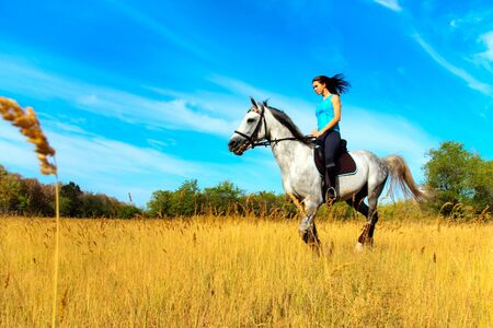 equitation: Beautiful girl riding a horse on nature