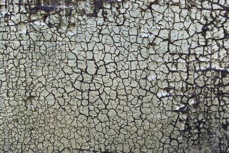tatter: Grungy dirty wall