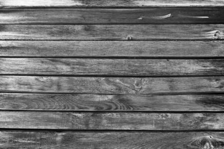 cherry hardwood: Texture of old give scratched wooden planks