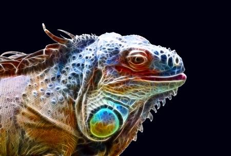 crested gecko: Fractal dragon