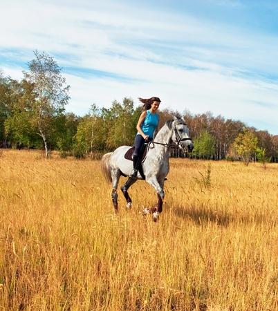 Meisje op een paard Stockfoto