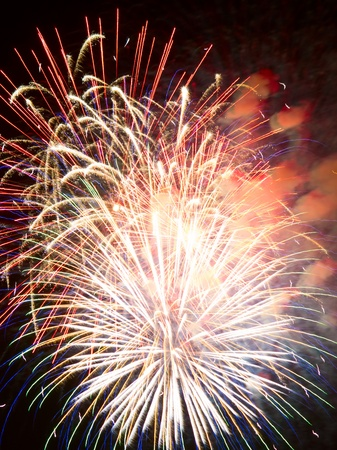 night fireworks: Fireworks