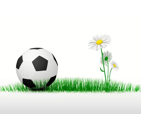 Soccer ball in the green grass with daisies  Three-D illustration Stock Illustration - 14855992