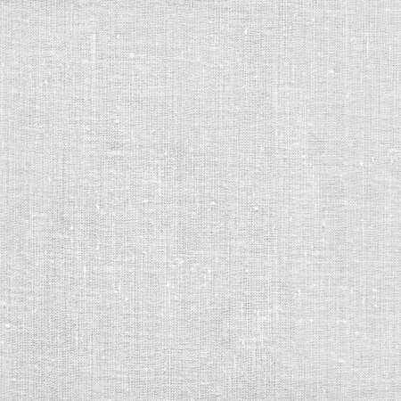 scanned: Blank white canvas page. High resolution scanned image