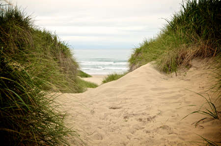glimpse: A glimpse of the ocean between two sand dunes at Nehalem Bay
