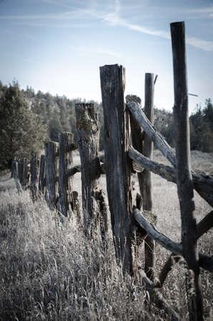 fencepost: Fenceposts in a desert location
