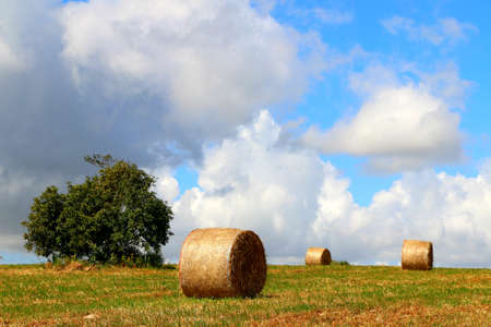 ragusa: Rolling up to the sky - Sicilian countryside - Ragusa Stock Photo