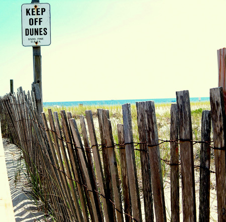 this is a photo of the dunes and sign keep off