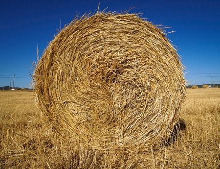 bail: stalk of straw