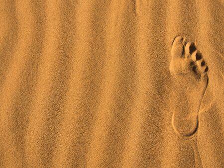 desert footprint: footprint on the desert sand