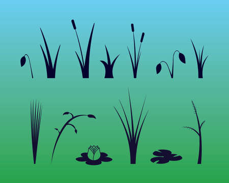 Vector Monotone Water Plants: Grasses, Reeds, Lilies