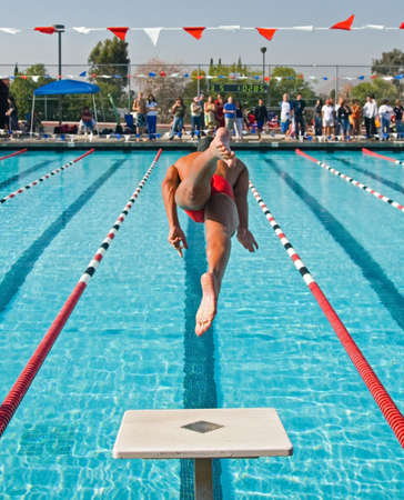 compete: The swimmers compete hard in the high school league championships