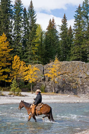 Cowboy on his horse crossing a river in the rockies in Canada Stock Photo