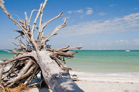 falling tide: Beach and ocean scenics for vacations and summer getaways