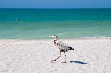 getaways: Playa y el oc�ano Paisajes para vacaciones y escapadas de verano  Foto de archivo