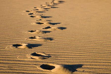 Footprints in the desert or beach sand Banco de Imagens