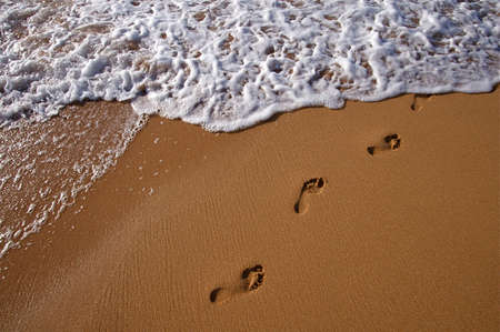 Tropical Hawaiian beach and rolling surf on the island of Kauai photo