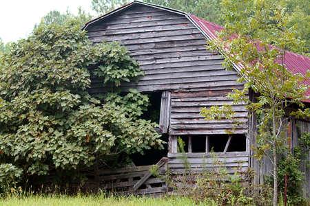 damaged roof: barn Stock Photo