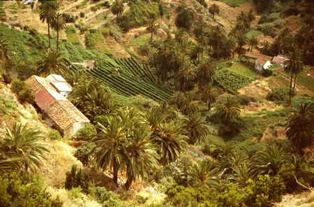 vallehermoso: Small village with agricultural terraces in the north of Gomera near Vallehermoso Stock Photo
