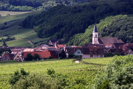 viniculture: Village with vineyards in Alsace, France Stock Photo