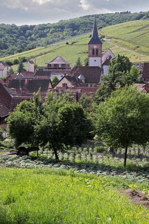 Small rural village in Alsace, France Stock Photo - 5351404