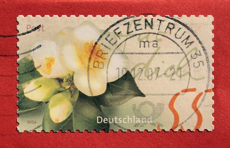 Postage stamp from Germany with red background photo