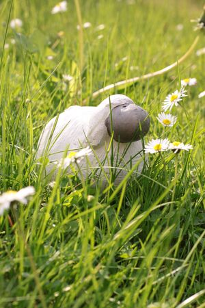 paschal lamb: Paschal lamb in the fresh green grass