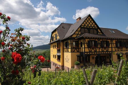 alsace: Village with vineyards in Alsace, France Stock Photo