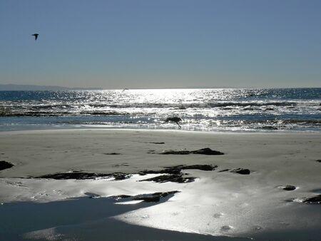 Beach in silver light near Santa Barbara (Arroyo Burro Beach), California, USA Stock Photo - 7470681