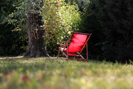 Red deck chair in  the garden with big birch tree Stock Photo - 8442531