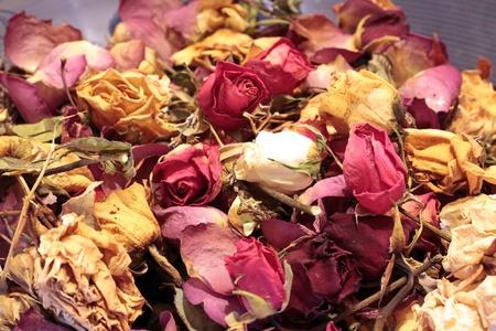 flores secas: Primer plano de un popurr� de colores rosas secas
